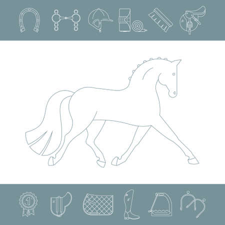 stirrup: Horse surrounded by different equine equipment and gear. Horseriding illustration. Equestrian design elements made in modern line style.