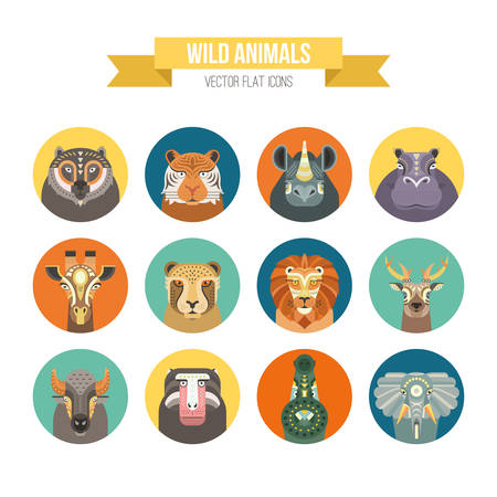 Collection of african animals made in modern flat style vector. Lion, rhino, alligator and other cute animals. Geometrical and clean vector. Çizim