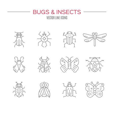 Set of bug line icons. Illustration