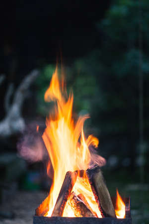 Abstract close-up photo of flames. Camp fire photo with shallow depth of field. Macro photo of fire.