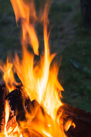 화 염의 추상 근접 사진입니다. 필드의 얕은 깊이와 캠프 화재 사진입니다. 화재의 매크로 사진입니다.