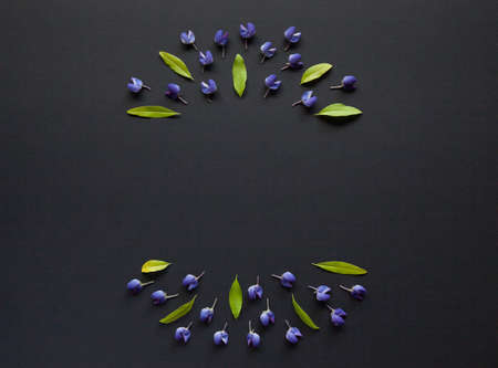 Frame made of leaves and flowers on black background. Top view floral composition. Flat lay arrangement.