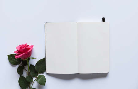 Pink rose on a white table with an open empry notebook - mockup for your artwork