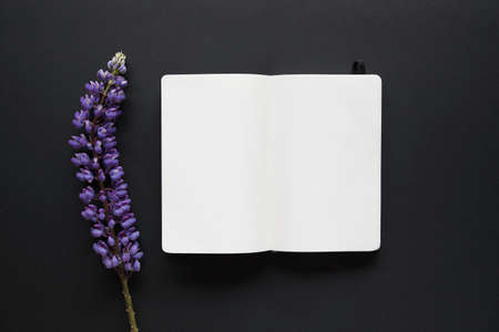 Notebook mockup with lupine flower on top of it on black table.