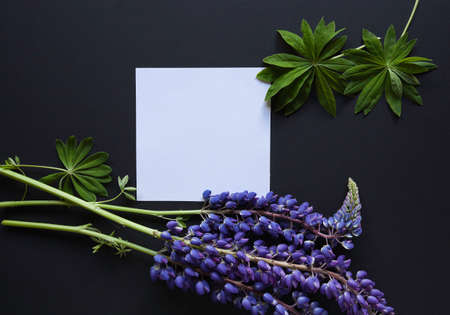 Lupine flower and card artistic mockup. Flat lay minimalistic composition.