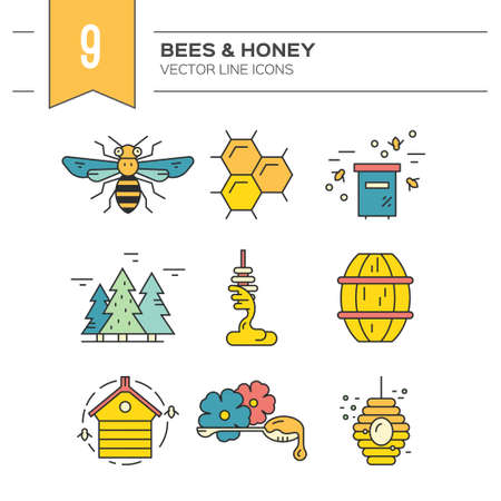 Collection of vector design elements with honey, bee, honeycomb, wax, hive. Perfect design elements for packaging, advertising, website.
