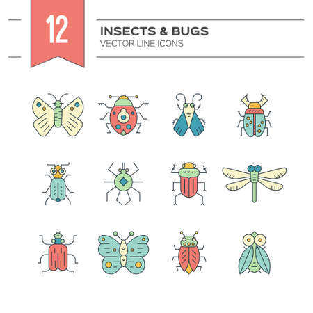 Colorful and modern collection of insects made in thin line vector style. Bug symbols, nature elements. Illustration