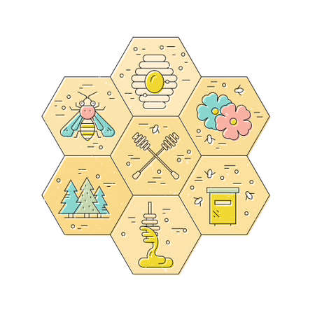 Honeycomb with different honey related items inside. Bee labor concept. Vector design element. Illustration