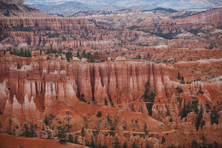 Bryce canyon national park view in USA.