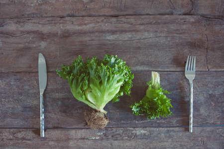 Letucce salad leaves on wooden background. Healthy food illustration. Salad ingridient with fork and knife.