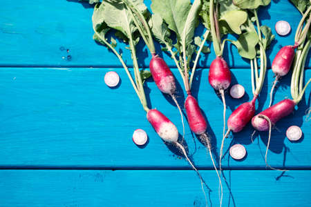 Artistic vacro photo of a bunch of farm grown radish. Organic natural food.