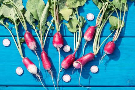 Artistic vacro photo of a bunch of farm grown radish. Organic natural food.