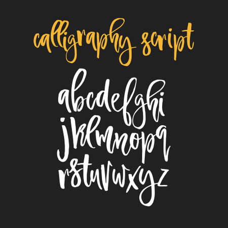 Handdrawn calligraphic font. Latin alphabet drawn by hand. Vector calligraphy font with unique texture. Ilustração