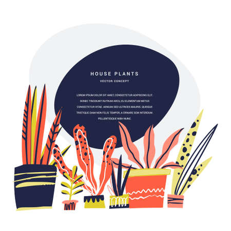 Houseplants hand drawn color vector illustration. Flower pots and text frame. House plants exhibition poster concept with copyspace. Indoor plants banner, magazine page scandinavian cartoon template Illustration