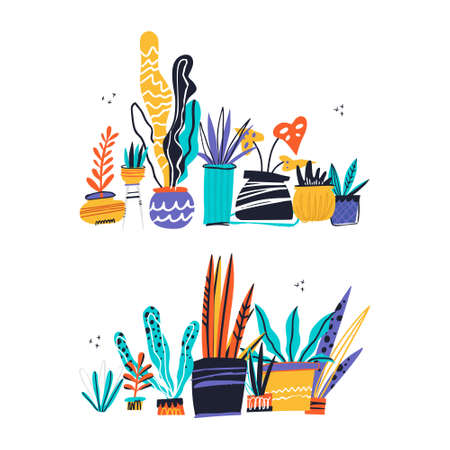 House plants color hand drawn illustrations. Home decorations and interior design elements. House plants flat handdrawn cliparts. Flower pots sketch composition. Isolated scandinavian cartoon items