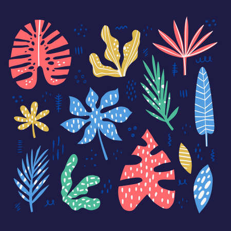 Exotic, tropical multicolor leaves hand drawn illustrations set. Jungle, rainforest foliage sketch cliparts collection. Palm, banana, monstera, aralia split leaves. Hawaii isolated design elements