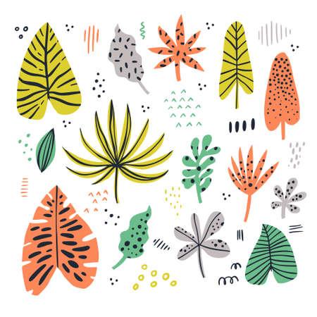 Exotic leaves hand drawn flat illustrations set. Jungle, rainforest foliage sketch cliparts collection. Palm, banana, monstera, aralia leaves. Houseplants cartoon drawings. Botanical design elements Illusztráció