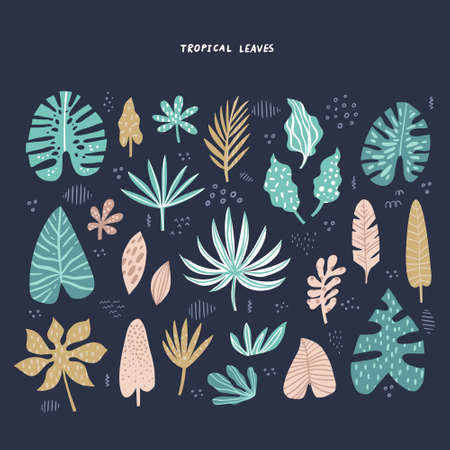 Exotic, tropical leaves hand drawn flat illustrations set. Jungle, rainforest foliage sketch cliparts collection. Palm, banana, monstera, aralia split leaves. Botanical isolated design elements