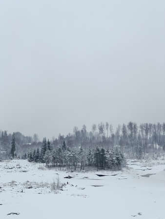 Beautiful winter landscape with snowy trees. Outdoor photo of pine trees covered with snow. Countryside during winter..