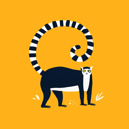 Ring tailed lemur hand drawn vector illustration. Adorable primate, exotic animal cartoon character. Cute tropical macaco isolated on yellow background. Childish t shirt print design
