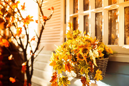 Basket with sunflower and autumn leaves on the blue wall of country house. Stock Photo