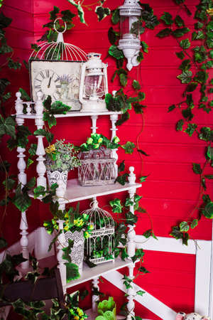 white bookcase entwined green ivy at the red wooden wall background.