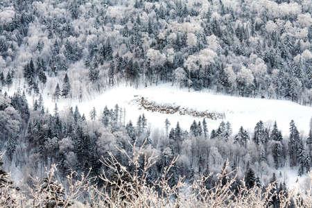 snowfield: Linhai Snowfield