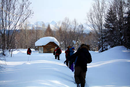 log cabin in snow: Pine forest in Changbai mountain snow white tourist cabins