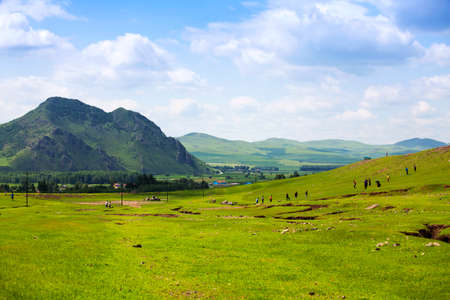 Aershan grassland scenery Stock Photo