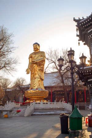 traditional custom: Buddha statues