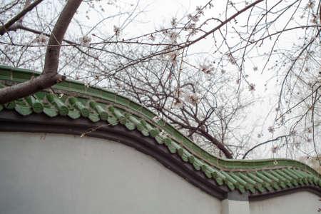 muralla china: Melocotón y la pared china