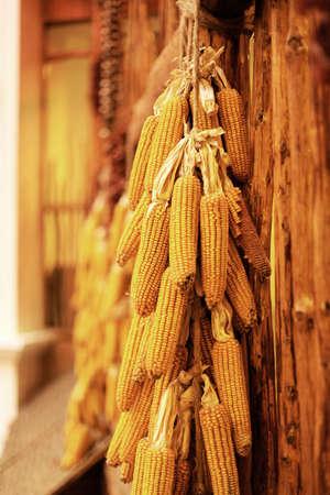 grain storage: Corn Stock Photo