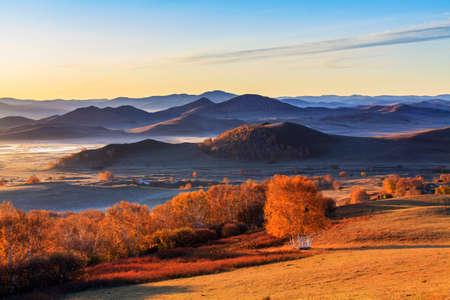 Aobaotu の朝の秋バーチ山地草原砂漠化
