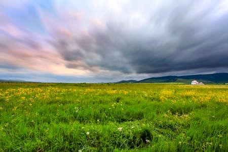 Summer grassland flower cloud Mongolia bag