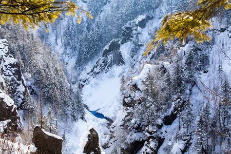Jilin Snow Valley River Pine Branch