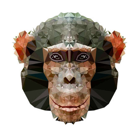 low poly monkey and polygon in geometric art shape Imagens