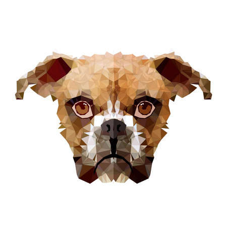 low poly dog and polygon in geometric art shape