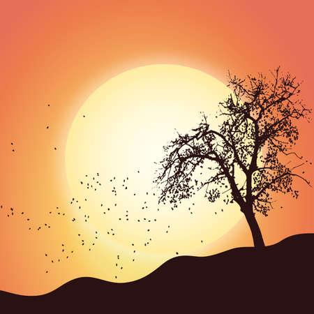 Autumn tree leaf nature scenic landscape - lanscape sunset nature vector illustration flat stock