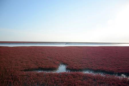gules: Red Beach