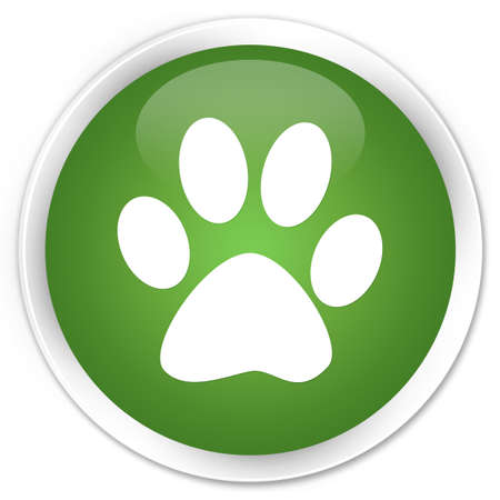 Animal footprint glossy green button photo