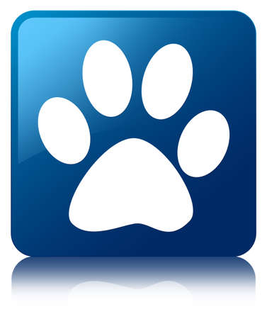 Animal footprint icon glossy blue reflected square button photo