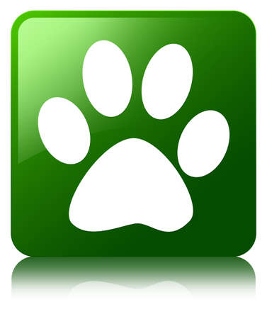 quadruped: Animal footprint icon green square button