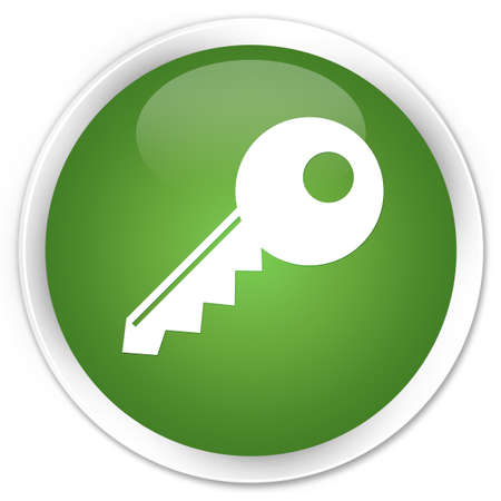 Key icon green glossy round button photo