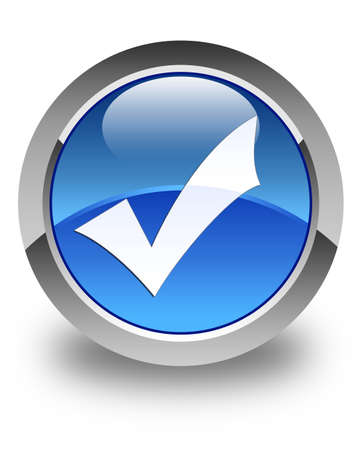 validation: Validation icon glossy blue round button