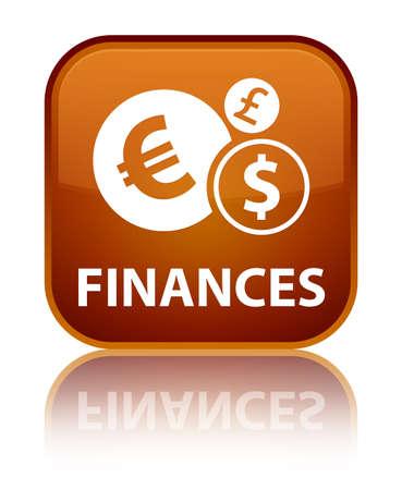 Finances (euro sign) brown square button photo