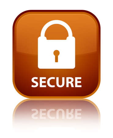 defend: Secure (padlock icon) brown square button