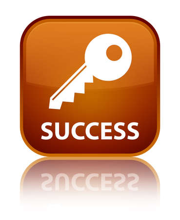 success key: Success (key icon) brown square button
