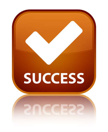 valider: Succ�s (validate ic�ne) de bouton carr� brun