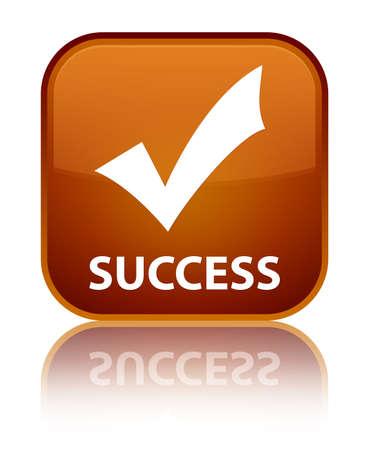 validate: Success (validate icon) brown square button