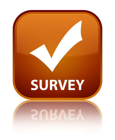 validate: Survey (validate icon) brown square button